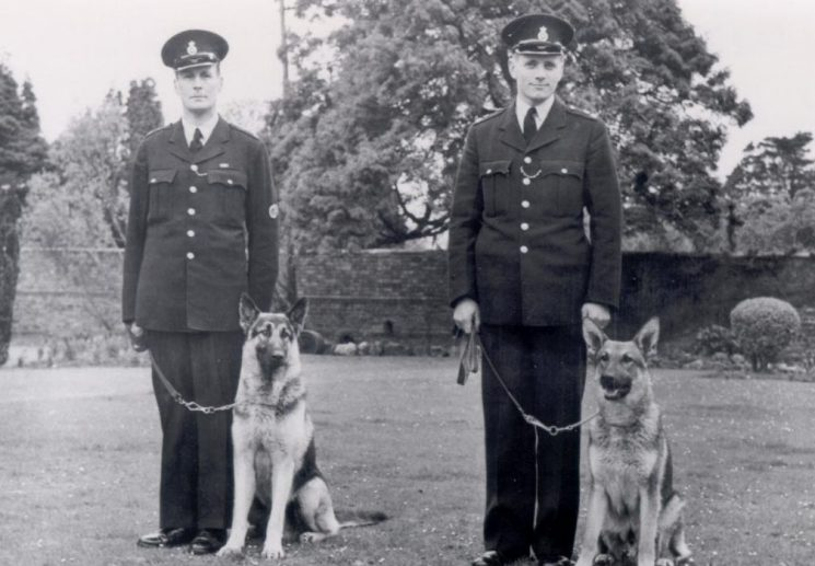 Police Constables William Thomas and  Peter Deacon, the first Gloucestershire police dog handlers 1959. (Gloucestershire Police Archives URN 179)