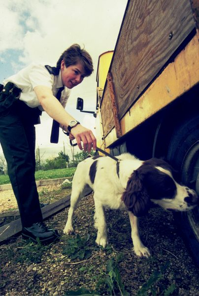 Dog Handler Police Constable Ruth Knights  on a search. (Gloucestershire Police Archives URN 1563)