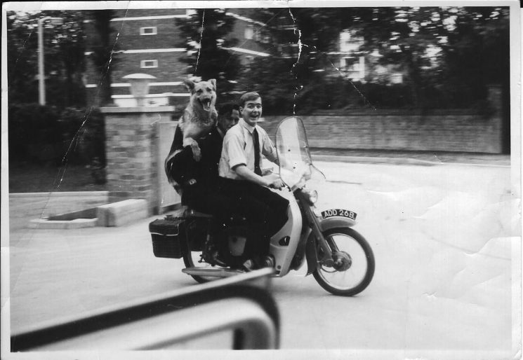 Police Constable Dave Thompson plus another police officer and a dog on 'DT's' personal Honda 50 c 1968. Not sure that this was an approved method of transporting police dogs. (Gloucestershire Police Archives 1967)