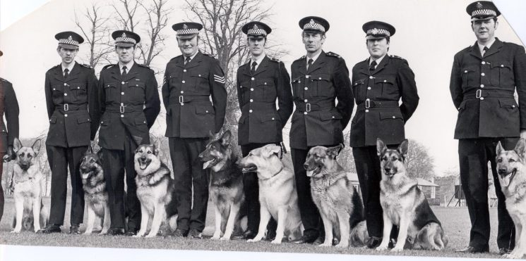 1977 dog section. Left to right Steve Bick & Sultan, Dave Carter & Scott, E. Smith & Rebel, Police Sergeant  Fred Jordan and Jason,