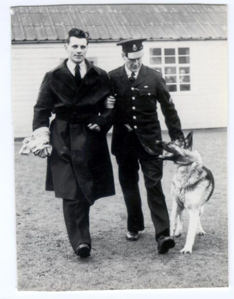 Police Constables Thomas and Deacon with dog Prince 1959. (Gloucestershire Police Archives URN 181)