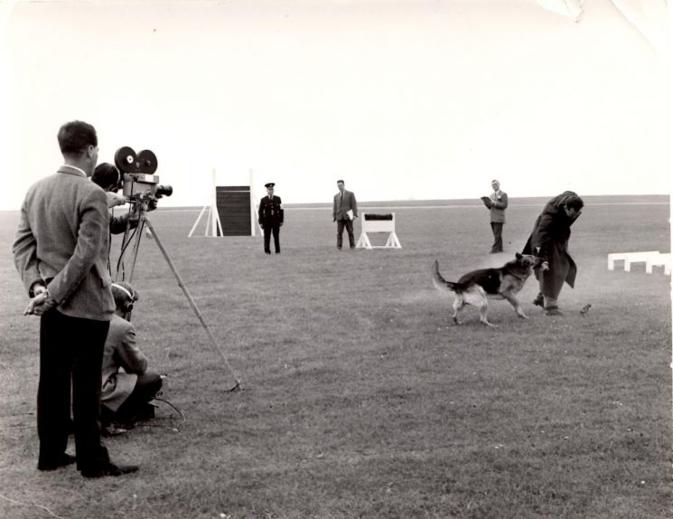 Geoff Price and his dog at the Police Dog Trials. (Gloucestershire Police Archives URN 2249)   Photograph from Pete Kilbey