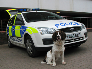 Ford Focus Dog Van (Gloucestershire Police Archives URN 3692 )