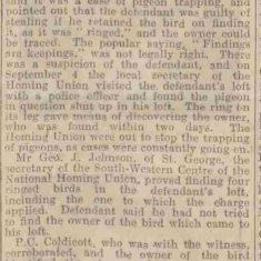Report of Police Constable Coldicott giving evidence in a pigeon trapping case. From The  Western Daily Press October 31st 1924. (Gloucestershire Police Archives URN 9326)